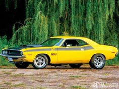 70 T/A Dodge Challenger