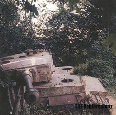 A destroyed Tiger 1 hulk, rusting away near Vimoutiers.