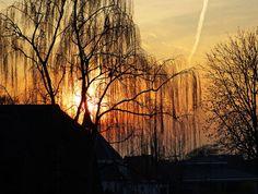 sunset in Odijk by hugodejong35