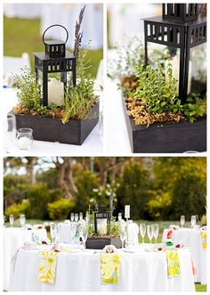 Herb garden center pieces