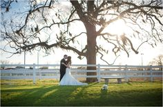 I want to take this picture! Briscoe Manor Wedding by Lindsay Elizabeth Photography
