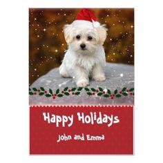 Adorable Maltese Puppy Template Holiday Card -  Xmas  ChristmasEve  Christmas Eve  Christmas 84c9b50fe