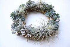 Succulent Wreath // Air Plants // Echeveria // Icy Blue by Eucca