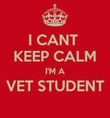 I can't keep calm- I'm a vet student