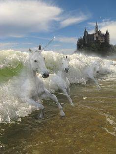 *THE LAST UNICORN ~ Unicorns in the Waves by BrightElixir.deviantart.com