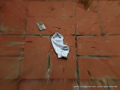 #photoadayapril #project366 13/104: Found by pvera, via Flickr