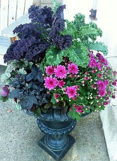 ornamental kale, mums, heuchera, and ornamental black pepper nice colors Container Flowers, Container Plants, Container Gardening, Garden Urns, Garden Planters, Bulb Flowers, Flower Pots, Ornamental Kale, Fall Containers