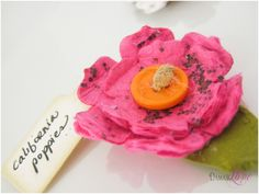Plantable paper a la Amber! How brilliant! Fall Wedding, Dream Wedding, Wedding Ideas, Dried Flowers, Paper Flowers, Seed Paper, Mothers Day Crafts, Love Craft, Outdoor Projects
