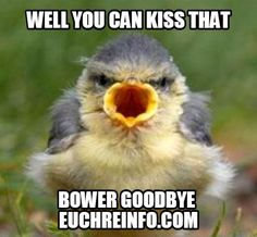 Well you can kiss that (Euchre) bower goodbye.