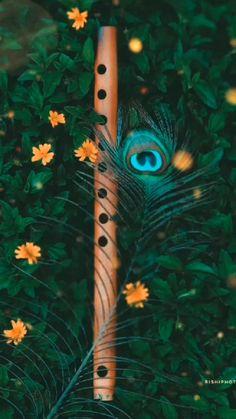 Krishna flute dhun 🎶