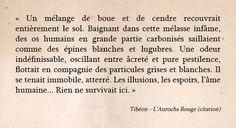 Aurochs Rouge - Chimeterre T1 par Tibéon Citation 03