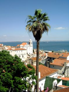 Lisbon Alfama 2008, Lisbon photography by cityhopper2