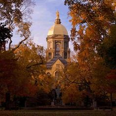 Notre Dame and the Golden Dome awash in the Autumn colors.  GORGEOUS!
