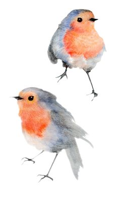ae12f8e0448 Robin - illustration perso gaellesouppart2.canalblog.com Watercolour  Paintings
