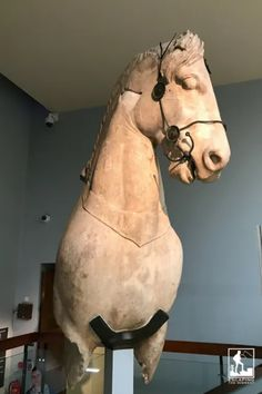 Colossal Horse from Halikarnassos – from the 4th century BC, found in Turkey (Room 21, ground floor) British Museum London One of four horses that was positioned on top of the mausoleum of King Maussollos of Halikarnassos, from 350 BC.