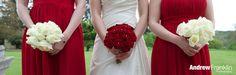 Wedding details By Andrew Franklin   www.andrewfranklin.co.uk