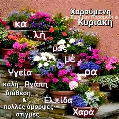 Beautiful Pink Roses, Happy Sunday, Floral Wreath, Plants, Cards, Sayings, Night, Greek, Floral Crown