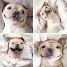 So freakin' cute!!!