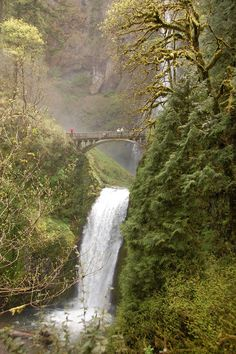 Outlaw Empress Bridge, Multnomah Falls, Oregon