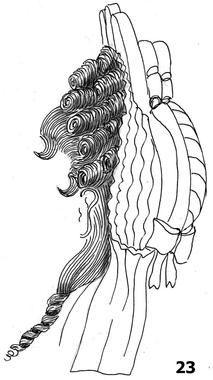 Cette coiffure Fontange est presque totalement couverte par le chapeau, sauf la partie frontale, ainsi qu'une confidente devant l'oreille. L...