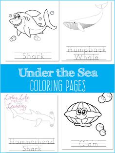 Under the sea coloring pages - a coloring activity that your ocean lover will enjoy