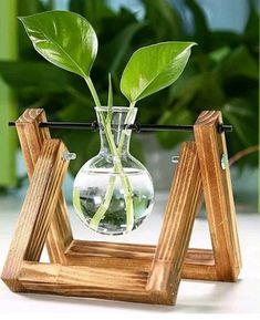 O que achou desse mini pendente para hidroponia? Simples e barato com. Vase Crafts, Wood Crafts, Diy And Crafts, Summer Deco, House Plants Decor, Plant Decor, Deco Nature, Diy Plant Stand, Plant Stands