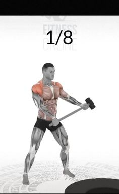 Abs And Cardio Workout, Gym Workouts For Men, Gym Workout Chart, Full Body Workout Routine, Kickboxing Workout, Gym Workout Videos, Gym Workout For Beginners, Weight Training Workouts, Biceps Workout