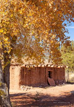 The Jemez Mountain Trail – A Delightful New Mexico Road Trip! New Mexico Road Trip, Travel New Mexico, New Mexico Usa, Mexico Trips, Alaska Travel, Alaska Cruise, Travel Ad, Yellowstone National Park, National Parks
