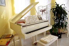Beautiful grand piano (: