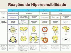 hipersensibilidade tipo i e resposta autoimune - Pesquisa Google