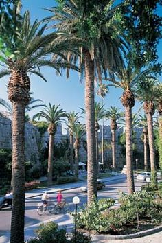 Kos island,town - Greece