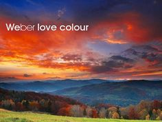inspirational colours - Google Search