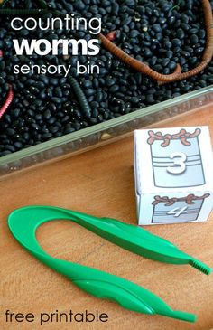 Counting Worms Preschool Math Sensory Bin – Fantastic Fun & Learning Counting worms sensory bin with free printable number and number word cubes. Great preschool garden or worm theme activity! Preschool Garden, Preschool Lessons, Classroom Activities, In Kindergarten, Preschool Activities, Spring Preschool Theme, Classroom Ideas, April Preschool, Preschool Plans
