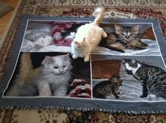 Photo Collage Blankets-- Beautiful woven photo blankets for your pets, family, sports teams and more!