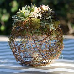 *This listing is for the exact item shown* Grapevine Sphere This handmade tabletop Grapevine Sphere is the perfect centerpiece for any occasion. Wedding Centerpieces, Wedding Decorations, Artificial Succulents, Deco Floral, Types Of Flowers, Bridal Shower Gifts, Fairy Lights, Colorful Flowers, Grape Vines