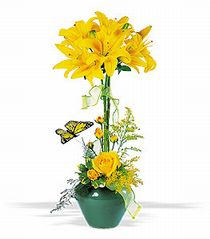 Lily Topiary-Lilies seemingly burst out of the ground while a butterfly flutters close by. It's an arrangement that's just right for any celebration. #Lilies #Flowers #CityLineFlorist #TrumbullFlorist
