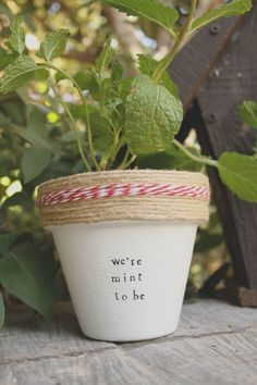 We're Mint to Be by PlantPuns on Etsy
