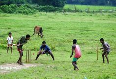 Cricket brings pride and joy to the broken streets of Bangladesh - Cricket - Sport - The Independent Cricket Bat, Cricket Sport, Cricket News, Village Photos, Play N Go, Most Popular Sports, Mural Wall Art, West Indian, Latest Sports News