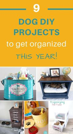 These dog DIY projects will help you stay organized and in control this year.