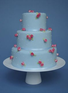Little Roses wedding cake       Pale blue cake with tiny  handcrafted pink sugar roses  and piped white dots - could change the roses to ivory white - sooooo cute xx