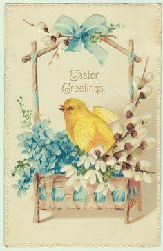 Vintage Easter Postcard Chick in Pussywillow Flower Basket | eBay