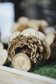 Pine cone table numbers - perfect for a fall or winter wedding! Photo by Jonathan Connolly Photography