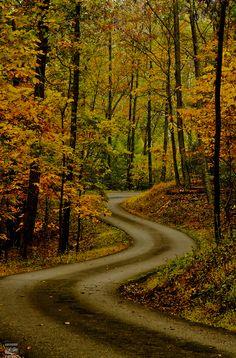 Autumn Road by konrad_photography Beautiful Roads, Beautiful Landscapes, Beautiful World, Beautiful Places, Beautiful Pictures, Foto Blog, Fotografia Macro, Autumn Scenery, Winding Road
