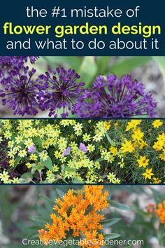 If your flower garden design leaves a bit to be desired or doesn't quite match your vision, you might be making this very common mistake. #gardening #flowers Flower Garden Plans, Flower Garden Design, Diy Garden Furniture, Diy Garden Projects, Garden Ideas, Amazing Gardens, Beautiful Gardens, Vegetable Garden Tips, Best Perennials