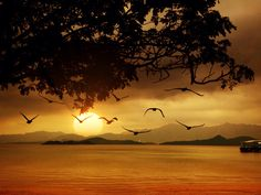 Sunset by Sweet Love on 500px