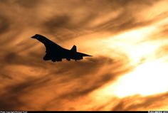 """Concorde: """"In Silhouette. Concorde, Tupolev Tu 144, South African Air Force, Passenger Aircraft, Commercial Aircraft, British Airways, Air France, Aircraft Pictures, Boeing 747"""