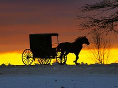 Photo of the Day Page Amish Farm, Amish Country, Amish Family, Country Charm, Pennsylvania Dutch Country, Amish Culture, Bob Ross Paintings, Old Wagons, Horse And Buggy