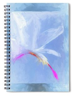 """This x spiral notebook features the artwork """"Jewels"""" by Mona Stut on the cover and includes 120 lined pages for your notes and greatest thoughts. Notebooks For Sale, Image Gifts, Fine Art America, Spiral, Art Photography, Notes, Artists, Gift Ideas, Jewels"""