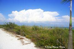 The View along Lighthouse Beach