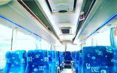 Bus Murah Jogja Seat 25